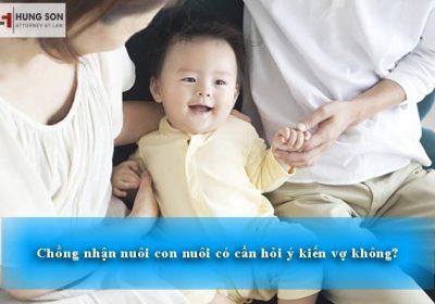 chồng nhận nuôi con nuôi có cần sự đồng ý của vợ